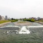 5月26日の豊平川