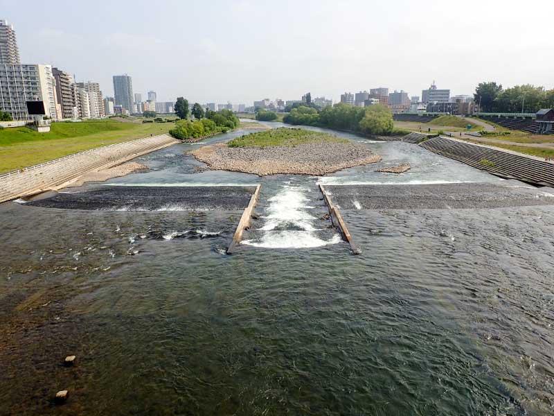 2015年6月15日の豊平川