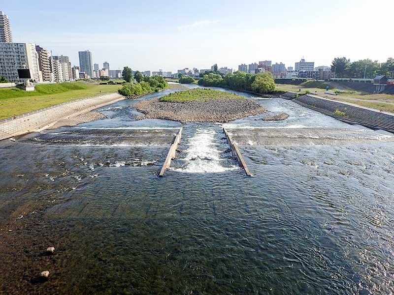 2015年6月19日の豊平川