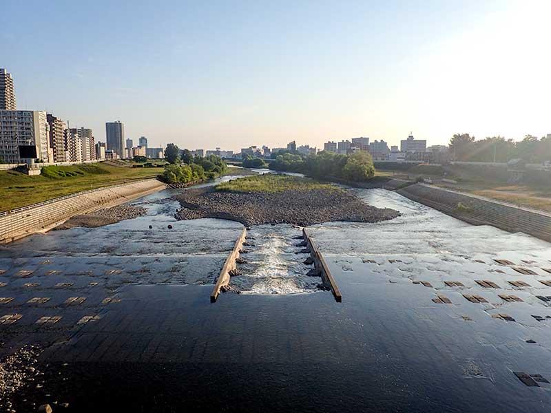 2015年7月11日の豊平川