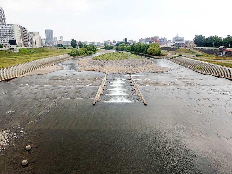 2015年7月14日の豊平川