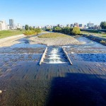 10月6日の豊平川