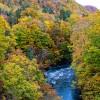 紅葉がキレイな定山渓温泉に行ってきた