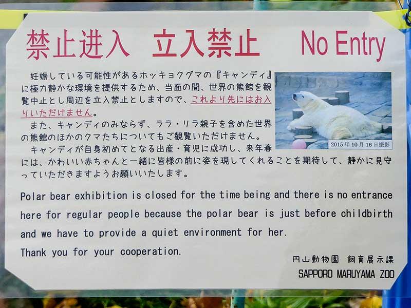 円山動物園、正解の熊館観覧禁止