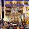 今年もファクトリーのクリスマスツリー