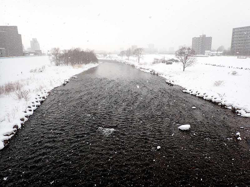 2016年1月22日の豊平川