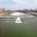 3月31日の豊平川