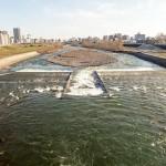 4月11日の豊平川