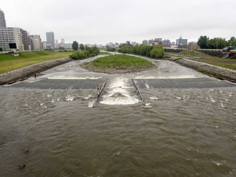 2016年6月18日の豊平川
